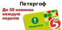 Магазин Пятёрочка по адресу Санкт-Петербург, Петергоф, Санкт-Петербургский проспект, 60А